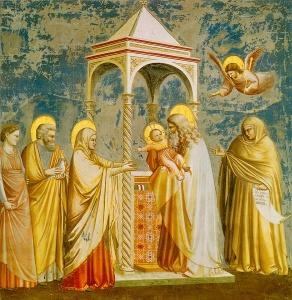 Giotto - Darstellung des Herrn im Tempel