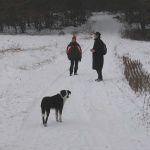Verschneiter Wanderweg