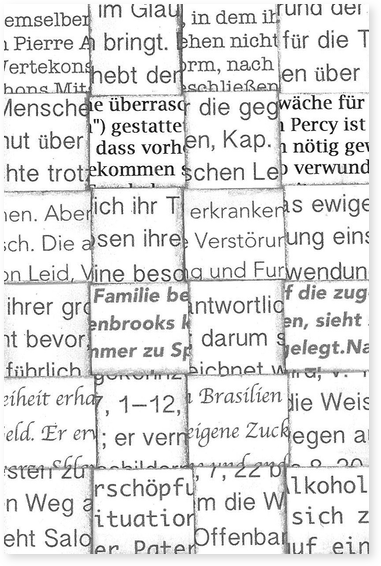 Wikipedia Web Art (Gabi Erne)