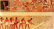 Zwangsarbeit in Ägypten